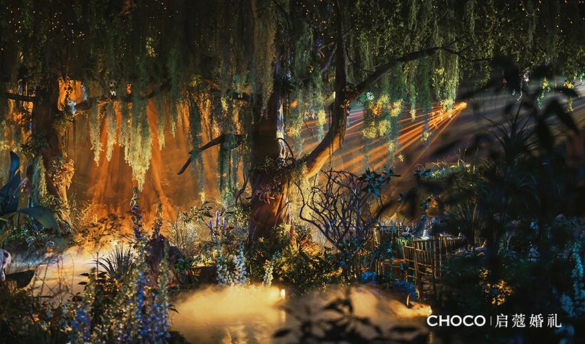 <b>启蔻案例 | 森林の公主</b>
